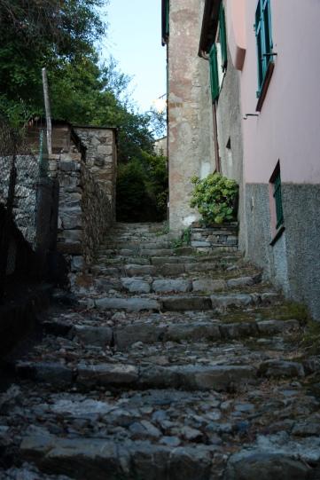 Velva, Liguria